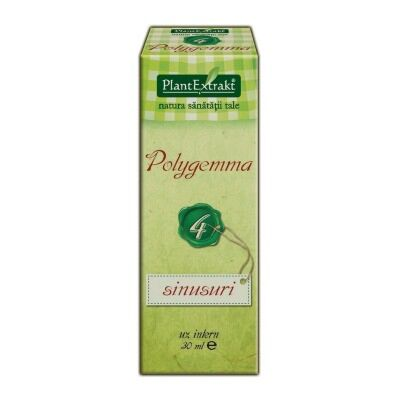 Plant Extrakt Polygemma Nr.4 Sinusuri, Extract, 30ml